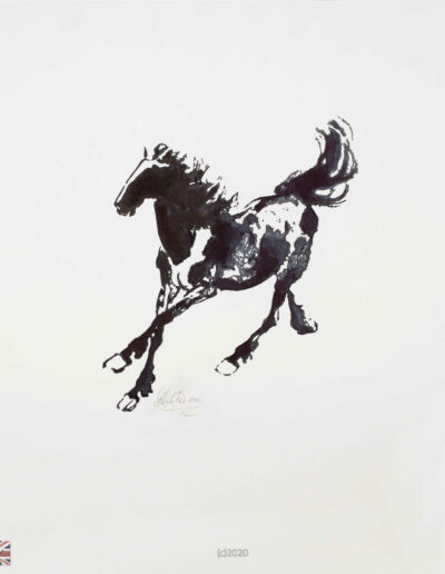 TGG Black Ink Galloping